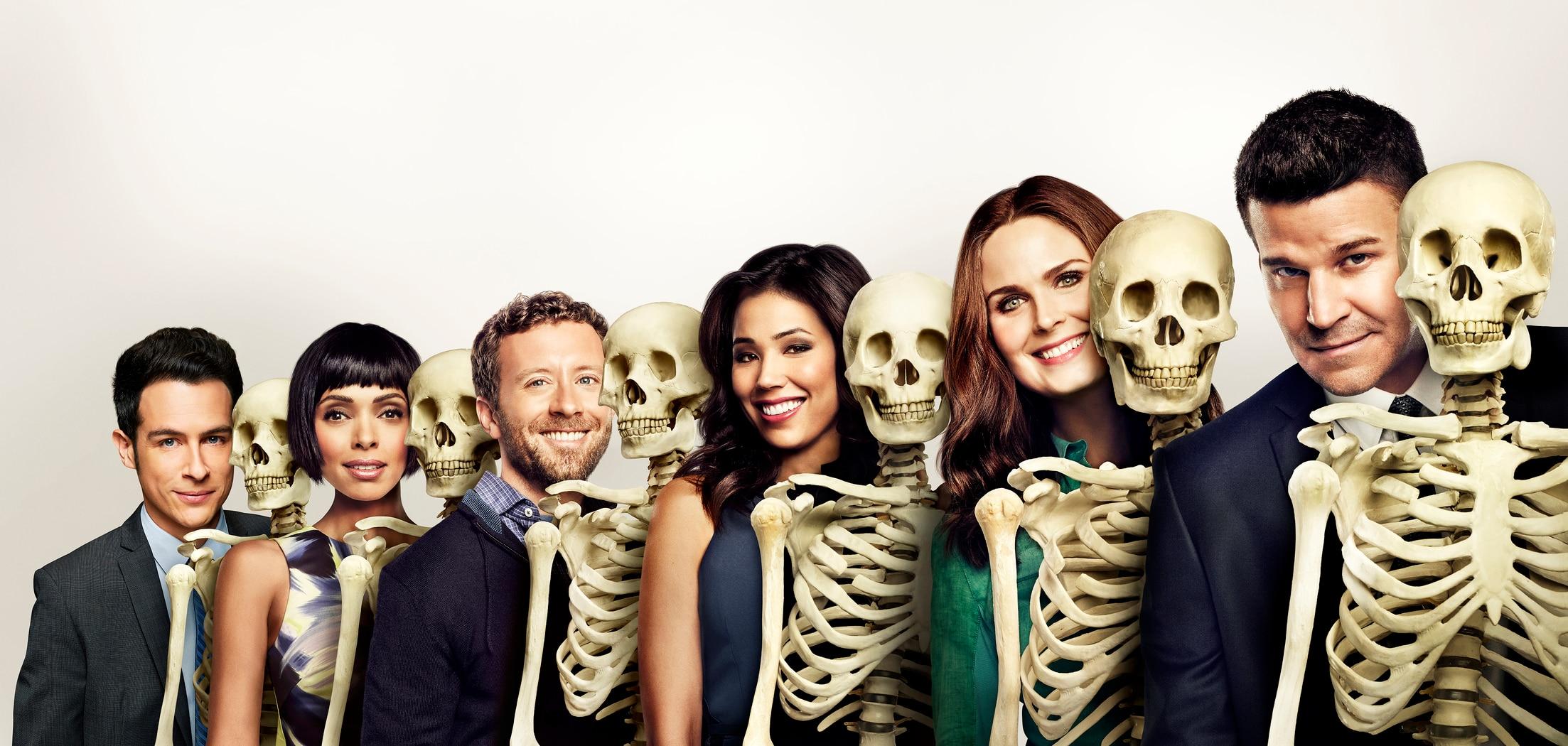 """Résultat de recherche d'images pour """"bones"""""""